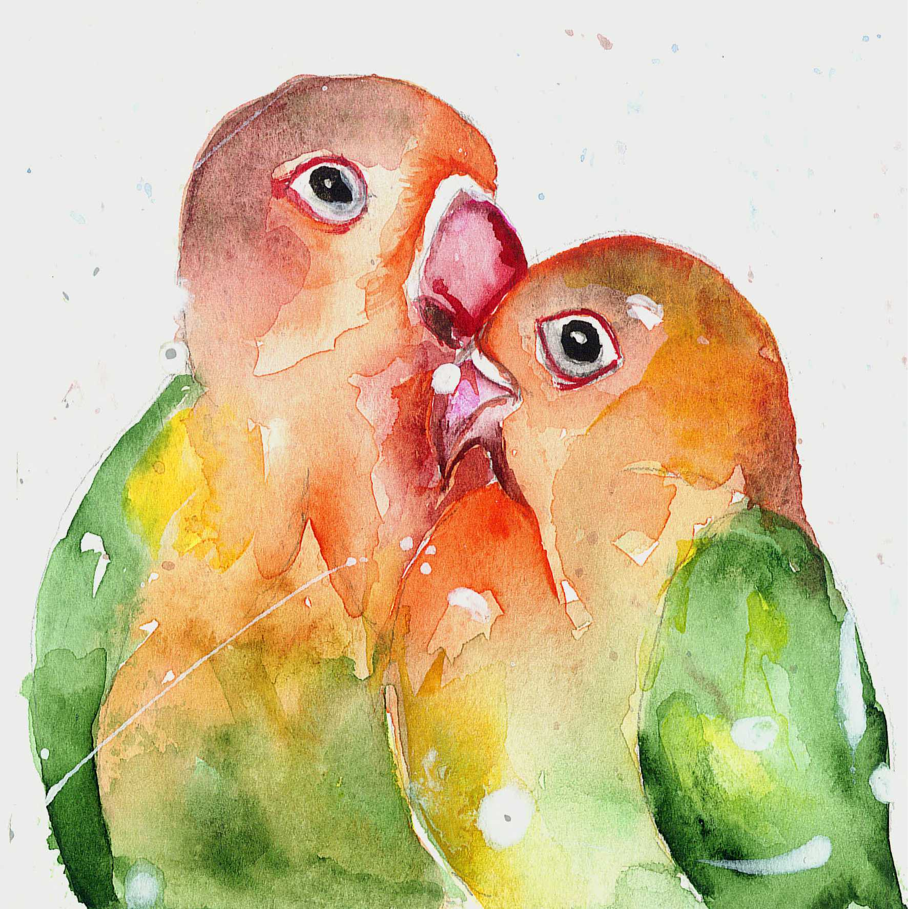 Little Love Birds